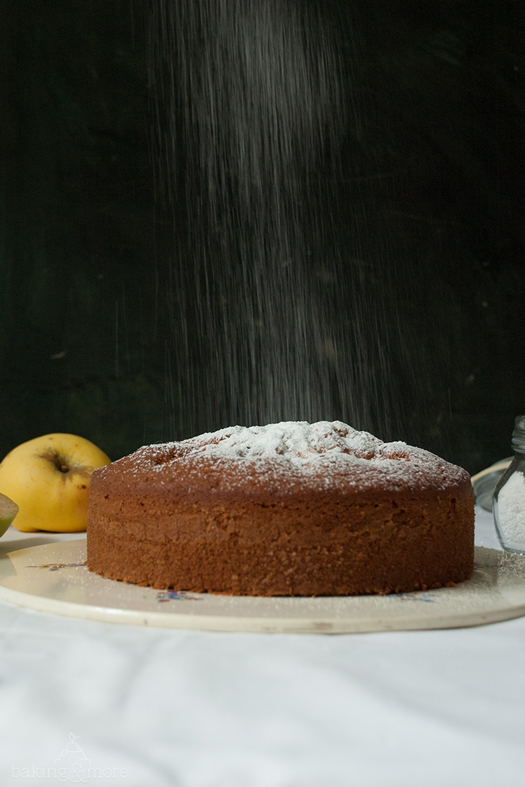 Apfel-Weintrauben-Schlupfkuchen
